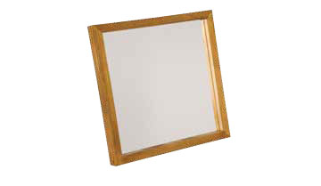 Ophthalmic Surface Mirror